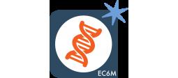 QWAM Text Analytics – Extraction entités nommées et concepts thématiques (EC6M) - OVHcloud Marketplace