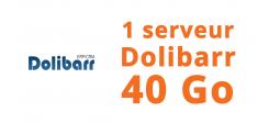 1 serveur Dolibarr 40 Go - OVHcloud Marketplace