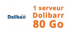 1 serveur Dolibarr 80 Go - OVHcloud Marketplace