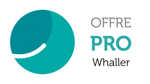 Offre Pro pour un utilisateur - OVHcloud Marketplace